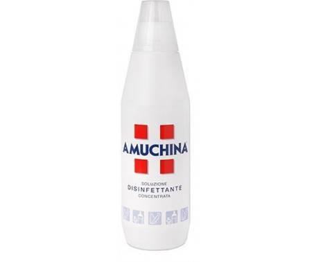 Amuchina Disinfettante Soluzione Concentrata 1000 ml